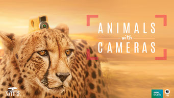 Nature: Animals With Cameras (2018)