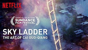 Sky Ladder: The Art of Cai Guo-Qiang (2016)