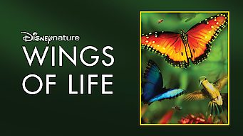 Disneynature: Wings of Life (2011)