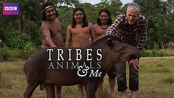 Tribe, Animals & Me