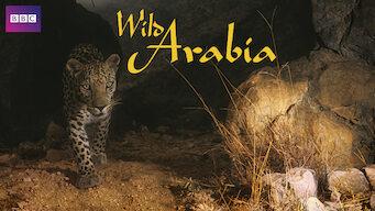 Wild Arabia (2013)