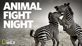 Animal Fight Night (2015)