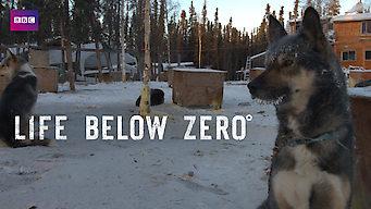 Life Below Zero (2016)