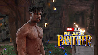 Black Panther on Netflix