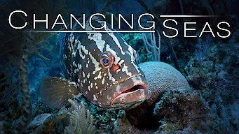 Changing Seas (2015)