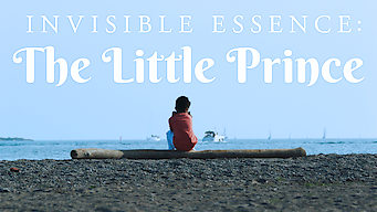 Invisible Essence: The Little Prince (2018)