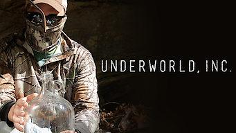 Underworld, Inc. (2016)