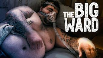 The Big Ward (2016)