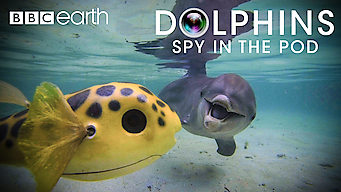 Dolphins: Spy in the Pod (2014)