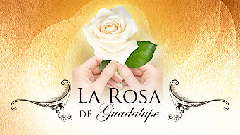 La Rosa de Guadalupe (2010)