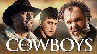 Cowboys (2015)