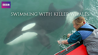 Image result for swimming with killer whales documentary netflix