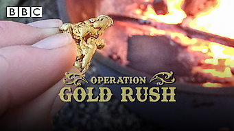 Operation Gold Rush (2016)
