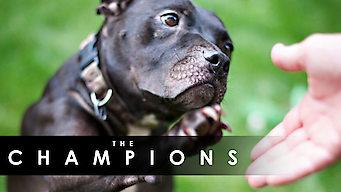 The Champions (2015)